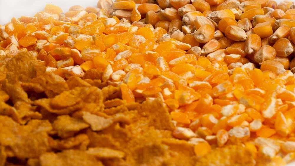 Кукурузная диета: правила, меню